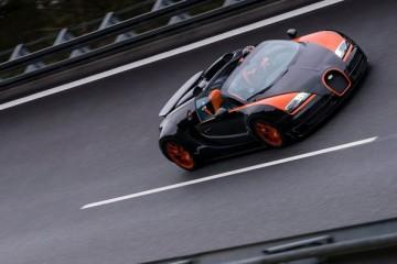 Vitesse_WRC-(13)