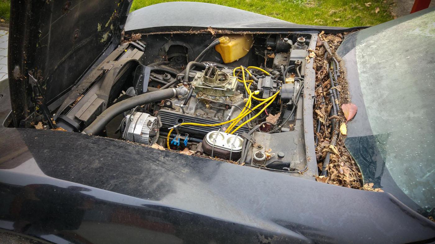 HEB-C3-Corvette-with-a-C6-Powertrain-LS3-09