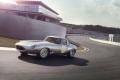Jaguar-Lightweight-(15)