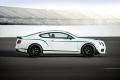 Bentley Continental GT3-R 2014 (14)