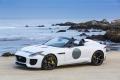 jaguar-f-type Project7 2014 (19)