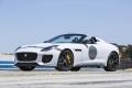 jaguar-f-type Project7 2014 (8)