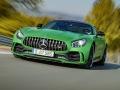 Mercedes-Benz-AMG_GT_R-(24)