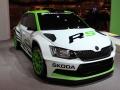 Essen Motor Show 2014 (1)