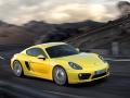 Porsche Cayman S 2013