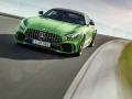 Mercedes-Benz-AMG_GT_R-(25)