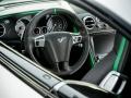 Bentley Continental GT3-R 2014 (10)