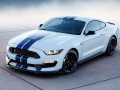 Ford Mustang Shelby GT350 2014 Wallpaper (12)