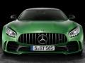 Mercedes-Benz-AMG_GT_R-(12)