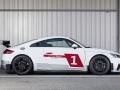 Audi-TT-Cup-(3)