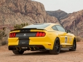 Ford Mustang Shelby Terlingua Racing Team 2016