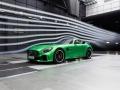 Mercedes-Benz-AMG_GT_R-(56)