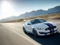 Ford Mustang Shelby GT350 2014 Wallpaper (14)