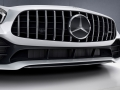 Mercedes-Benz-AMG_GT_R-(15)
