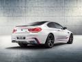 BMW M6 Coupé Competition Edition 2015