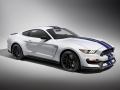 Ford Mustang Shelby GT350 2014 Wallpaper (23)